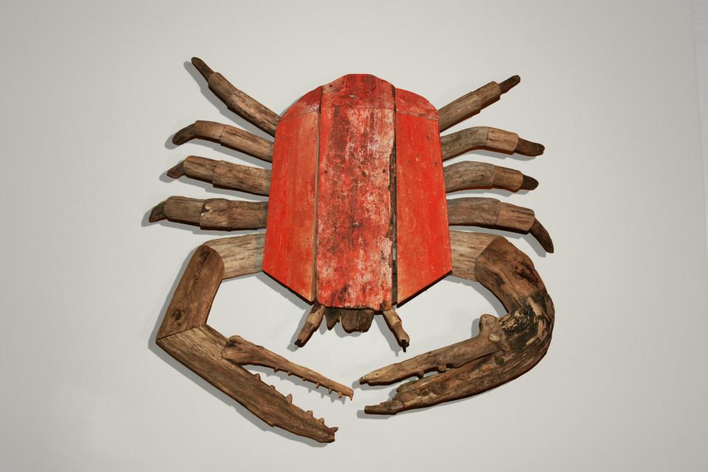 Driftwood Crab